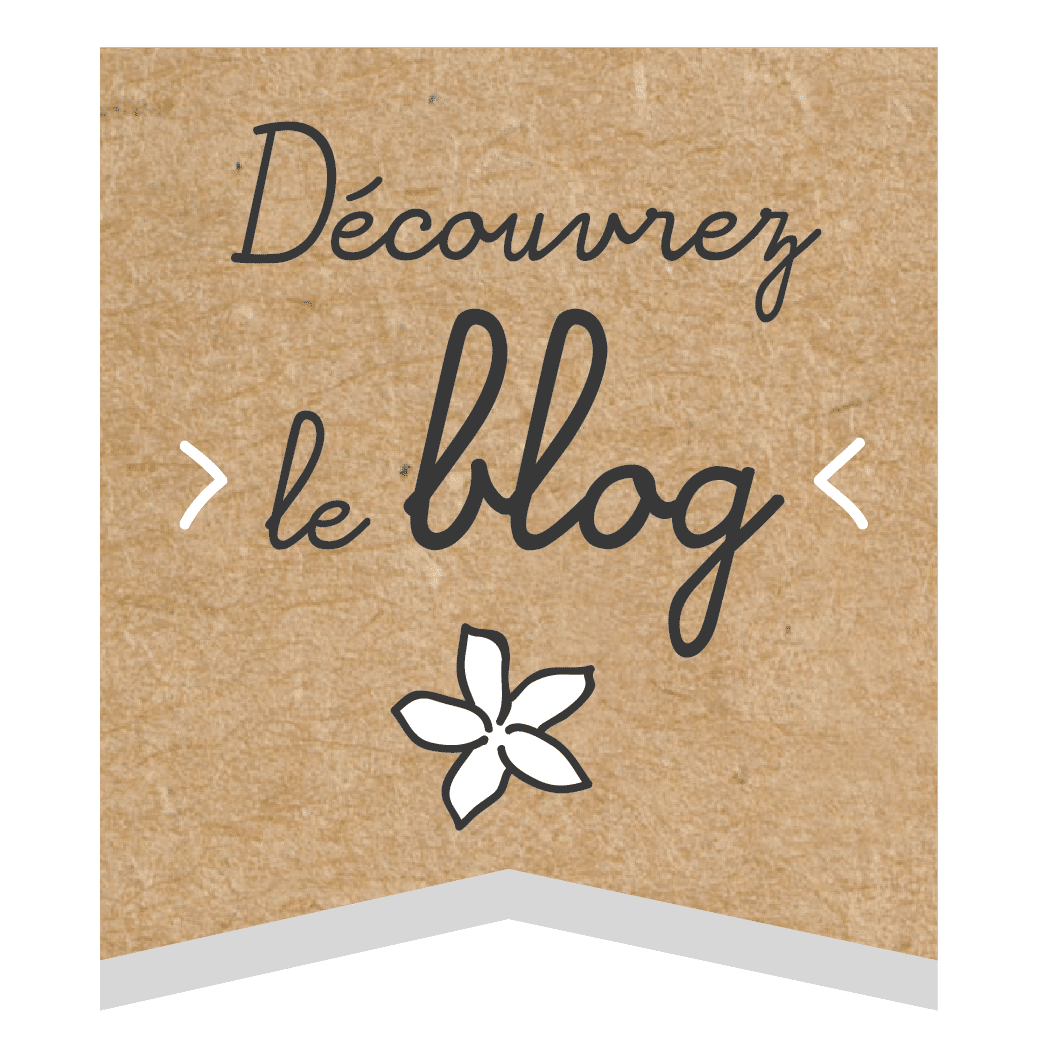 Découvrez le blog ! ateliers au naturel nantes